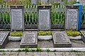 Rozhyshche Volynska-section of the mass graves of soviet soldiers-details-02.jpg