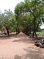 Rue à l'intérieur du campus d'Abomey-Calavi UAC.jpg