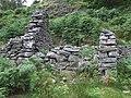 Ruins at Dinas, Cwm Doethie, Ceredigion - geograph.org.uk - 512075.jpg