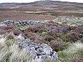 Ruins by Shleanaferan - geograph.org.uk - 991545.jpg