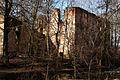 Ruiny pałacu myśliwskiego – Grodziszcze (zetem) 2.jpg
