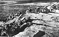 Russian troops with Winchester M1895 Rifles, 1916.jpg