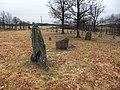 Särestads gravfält (Raä-nr Årstad 40-1) resta stenar 2647.jpg