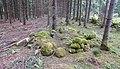 Sörby slätter Husgrund efter Feska-Johannesa skjul (Raä-nr Sörby 158) 2464.jpg