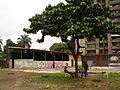 SUD Salon Urbain de Douala 2007-11.jpg