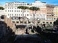 Sacred area in Largo di Torre Argentina 6.JPG