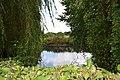 Saint-Aubin-en-Bray pt étang 3.JPG