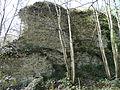 Saint-Pierre-de-Semilly(50), vestige de mur en arête-de-poisson.JPG