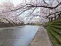 Sakurabashidori, Toyama, Toyama Prefecture 930-0004, Japan - panoramio (7).jpg