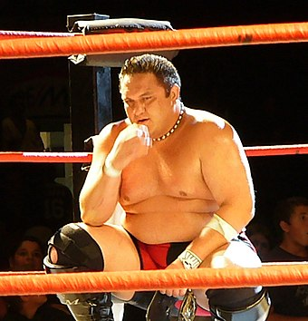 Adult Samoan male kneeling in a wrestling ring with red ropes.