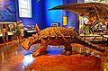 San Diego Natural History Museum (19718504041).jpg