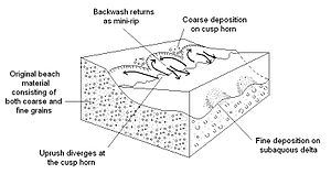 Swash - Image: Schematic showing beach cusp morphology