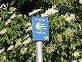 Schild Jakobsweg vor Holunderbusch oestlich Sargstedt 2014-06.jpg