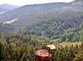 Schwarzwald bei Reichental - panoramio (2).jpg