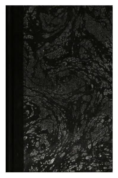 File:Schwob - Mœurs des diurnales, 1903.djvu