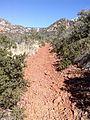 Secret Canyon Trail, Sedona, Arizona - panoramio (22).jpg