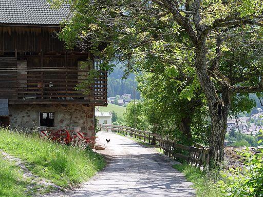 Seis, Laranzer Wald - panoramio