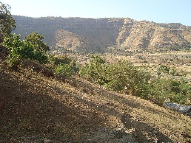 Ethiopia: ዘ-ሐበሻ የዕለቱ ዜና