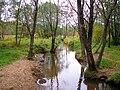 Serebrjanka River (Izmailovo Park, Moscow).jpg