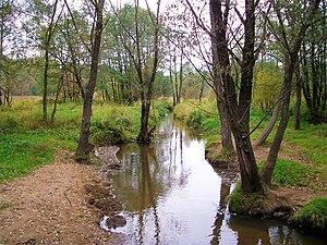 Serebryanka River (Moscow) - Image: Serebrjanka River (Izmailovo Park, Moscow)