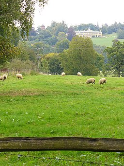 Sheep Grazing by Yewtree Farm - geograph.org.uk - 560458