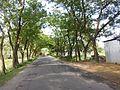 Sherpur Upazila, Bangladesh - panoramio (13).jpg