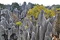 Shilin Stone Forest Geopark 1.jpg