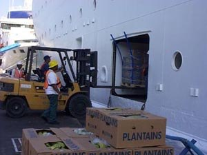 Provisioning (cruise ship) - Workers load a Cruise Ship in Charlotte Amalie, USVI