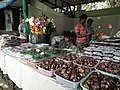 Shop selling from Lalbagh flower show Aug 2013 8648.JPG
