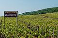 Sign announcing the beginning of the Chambertin vineyard (7309849056).jpg
