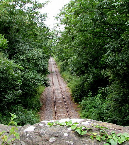 The branch near Iron Acton Single-track railway west of Nibley Lane near Iron Acton (geograph 5726678).jpg