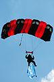 Sky divers (3603691748).jpg