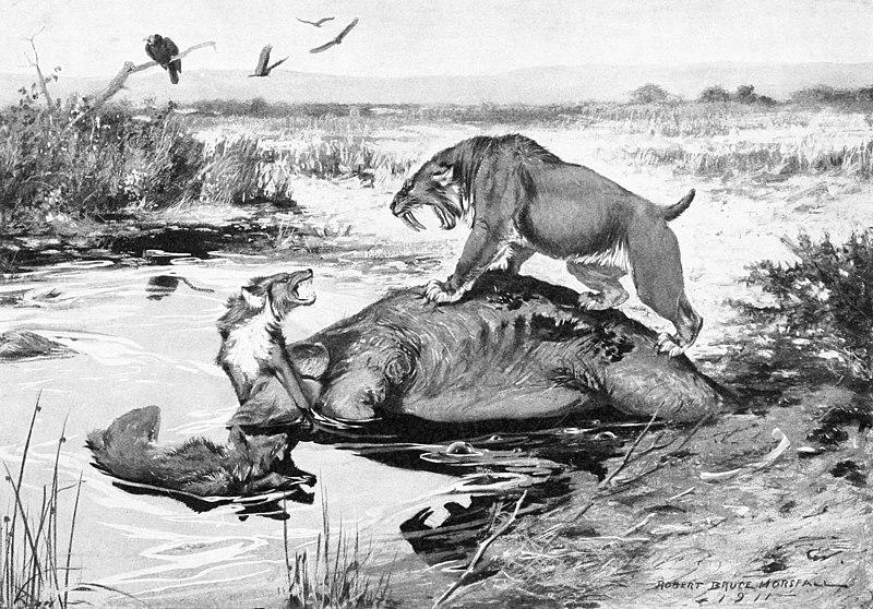 File:Smilodon and Canis dirus.jpg