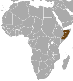 Somalian slender mongoose - Image: Somali Slender Mongoose area
