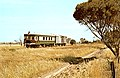 South Australian Railways model 75 railcar no 55 and two DWF vans on Milang railway line near Nurragi, mid-1960s (PGCurnow).jpg