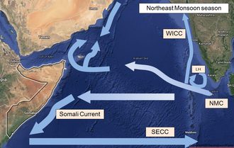 Somali Current - Southward Somali Current during Northeast Indian Monsoon