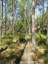Spång Tivedens nationalpark.jpg