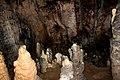 Spomenik prirode Banja Stijena 21.jpg