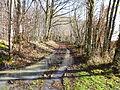 St-maurice-s-aveyron--ancienne route de Melleroy-1.JPG