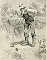 St. Nicholas (serial) (1873) (14781241614).jpg