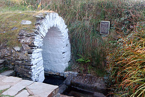 English: St Nons Well St Nons Well is protecte...