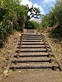 Stairs in Cape Chinen Park 1.jpg