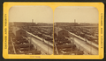 Stock Yards (stockyards), from Robert N. Dennis collection of stereoscopic views 3.png