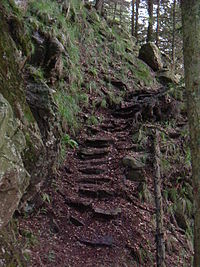 Stufen am Alpinen Pfad.JPG