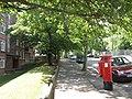 Sunderland Road, SE23 - geograph.org.uk - 899835.jpg