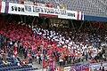 Supporters FC Salzburg25.JPG
