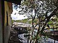 Surui - panoramio (13).jpg