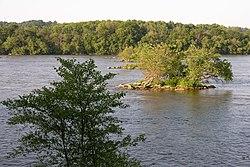 Саскуэханна около устья
