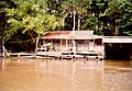 Swamp Tour Louisiana March 1991 03.jpg