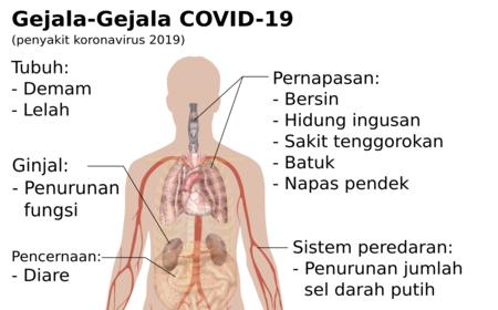 Penyakit koronavirus 2019